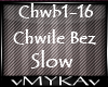 CHWILE BEZ SLOW