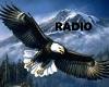 Flying Eagle Radio