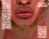 . Sand Beard 01