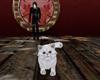 Gabriel - Eric's Cat