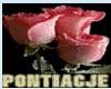 yellow/roze tee