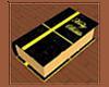 Black & Gold Bible
