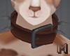 MIX-N-MATCH Dog Collar 1