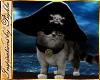 I~Pirate Captains Cat