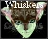 [ST] Mintolate Whiskers