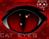 Red Eyes 2a Ⓚ