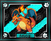 +M+ Charizard Animated