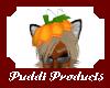 puddi pumkin hat