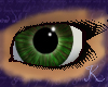Forrest Jade Eyes F