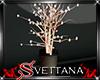 [Sx]Autumn Light Tree