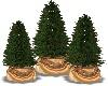 Triple Christmas Trees