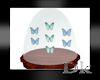 *Dk* Butterfly