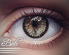 B! Eyes - Forest . Male
