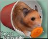 Hamster :ᚠ: Drv