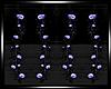 -J- Cosmos Single Vine