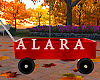 Kids Red Wagon