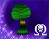 Round Cap Mushroom 1