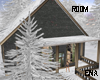cozy wintery home