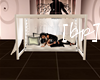[bp] Centered Canopy bed