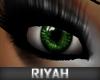 !R  Celebrity Eyes GREEN