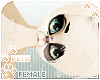 [Pets] Fudge | Kendra