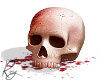Bloodied Skull
