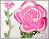 n| DRV Hand Rose