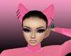 *K* Pink Ears