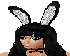 Play Boy Bunny Ears