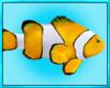 Fish Dive Scuba