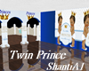 Twin Princes Shower