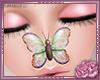 Nose Flutter V5