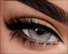 Lashes 01   Zell