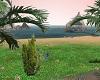 Vip Island