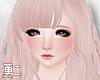Y' Nollia Angel