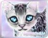 H| Cute Kitty Cat Pet V2
