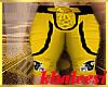 Steelers Football Pants