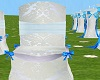 Blue Wedding Chairs