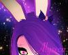 Aly! Iris Ears v2