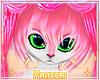 *! Pink Fox Short 4
