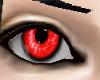 Volfen Red Female