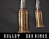 *V Bullet Earrings.