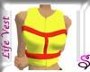 Safety Life Vest