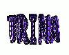 Trina Name Sticker