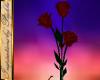 I~Roses
