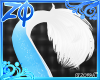 Jawbreaker | Tail