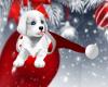 !T! Xmas | Puppy