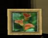 [JL] orange calla lillys