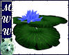 Floating Waterlily- Blue