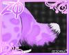 Kitz | Tail